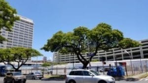 The Central Ala Moana Building Site